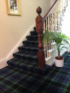tartan carpet - for the stairs? Or the dining room?                                                                                                                                                      More