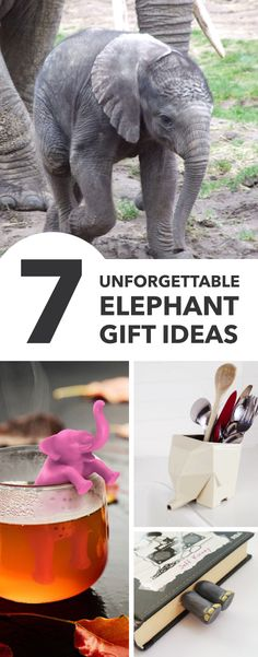 Elephant gift ideas: Discover something unique and extra special with these elephant gift ideas, perfect for the elephant loving man or woman in your life Majestic Animals, Elephant Gifts, Elephants, Addiction, Christmas Gifts, Gift Ideas, Woman, Unique, Life