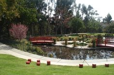 The Kenneth Hahn State Recreation Park is a hidden gem of LA without a doubt! Just peep the cute Japanese theme of this garden, a great place for taking pictures and meditating.