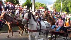 DESFILE DE CAVALEIROS DE JAGUARIÚNA 2015 PARTE 15