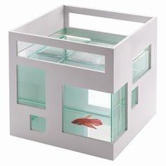 Fish appartment! Love it!