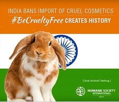 Did you know that cosmetics testing on animals is banned in India? Re-pin if you think it should be also banned in the U.S.! #BeCrueltyFree http://www.humanesociety.org/becrueltyfree