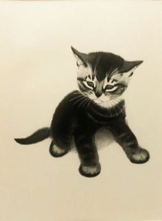 1950s A Tabby Kitten Childrens Cat Print Clare by SkitterCats