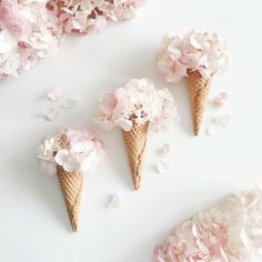 Inspiration image using ice-cream cones and petals to create the appearance of delicate floral ice-creams.