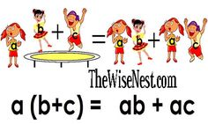 Distributive Law Activity and Video - The Wise Nest  (C1, Wk 23)