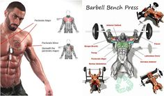 Best-Chest-Exercises-3-Tips-to-a-Better-Chest.jpg (640×375)