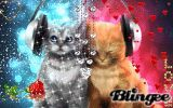 Cats Love Animated Pictures for Sharing #136268550 | Blingee.com