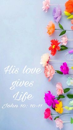 His love gives life John 10: 10-11 #wallpaper #flowers #God #bible #versicle #blueish #Love