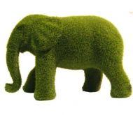 moss Elephant.