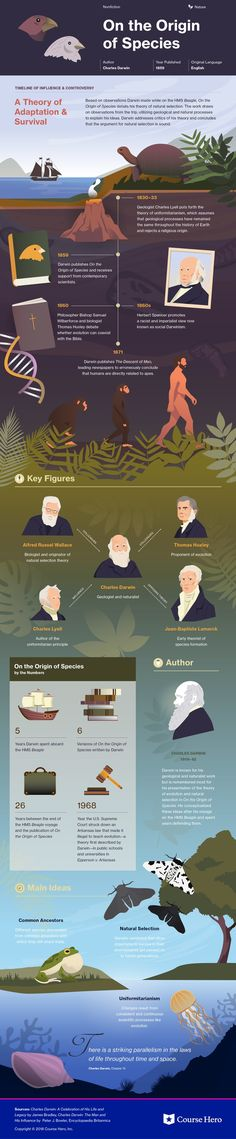 This @CourseHero infographic on On the Origin of Species is both visually stunning and informative!