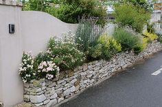 美しい石積み花壇 ガーデニング