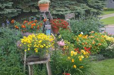 """Lots of cute ideas for incorporating """"junk"""" into a flower garden.  Plus, her flowers are gorgeous!  I would love to have this look to my flower beds someday."""