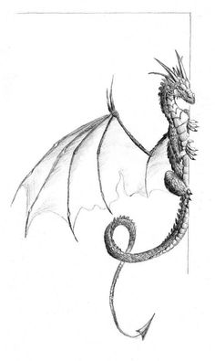 """""""Dragon by ~Emberiza on deviantART"""" This dragon's just waht I'm looking for! """"Dragon by ~Emberiza on deviantART"""" This dragon's just waht I'm looking for! Probably only one set of horns on the top though, and five toes total. Magical Creatures, Fantasy Creatures, Bracelete Tattoo, Dragon Sketch, Dragon Art, Dragon Wing, Art Drawings, Drawings Of Dragons, Cool Dragon Drawings"""
