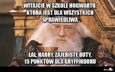 Today we collect some Harry Potter Memes Hogwarts that are so funny. Just read out these Harry Potter Memes Hogwarts. Memes Do Harry Potter, Fans D'harry Potter, Harry Potter Fandom, Harry Potter House Quiz, Harry Potter School, Harry Potter Hermione, Potter Facts, Meme Comics, 9gag Funny