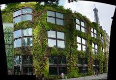 Image result for Wild Garden of Paris quai branly