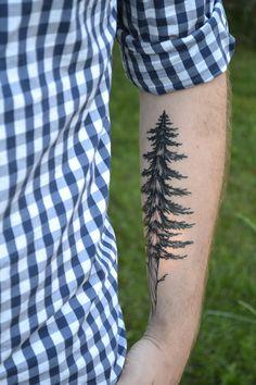 Tattoos & Evergreens // Whimsy Darling #tree #tattoo #blog