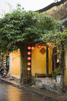 Vertical strands of lanterns instead of horizontal? (Hoi An - Vietnam) Vietnam Destinations, Vietnam Tours, Hanoi Vietnam, Vietnam Travel, Asia Travel, Canon Eos, Hoi An, Monuments, Vietnam Holidays