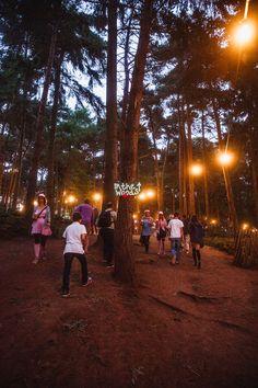 Forest vibe at Lattitude
