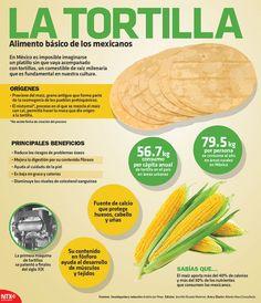 En México es imposible imaginarse un platillo sin que vaya acompañado de tortilla.  En la #Infographic conoce los beneficios de consumir este alimento.