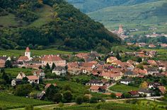 Austrian Vineyards Are All in the Family - NYTimes.com