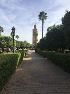 Marrakech day trips tours, holiday, adventure, imperial cities, merzouga, camel, seminar, incentive,vehicles,golf,booking hotel,accommodation,vip,luxury,riad,all inclusive