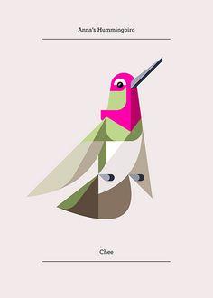 Annas Hummingbird, Flora and Fauna series, Birds edition - Josh Brill Creative Illustration, Bird Illustration, Graphic Design Illustration, Modern Graphic Design, Graphic Design Inspiration, Graphic Art, Art Colibri, Hummingbird Art, Affinity Designer