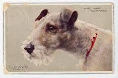 Afbeeldingsresultaat voor fox terrier vintage