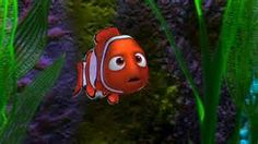 barracuda finding nemo 4 barracuda finding nemo 5 barracuda finding ...