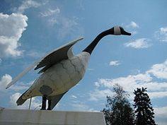 Wawa Goose, Wawa ON