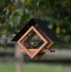 The Architect Bird Feeder - cup Seed, Worm, Nut, and Fruit Capacity - madáretetők - Vogelhaus Wood Bird Feeder, Bird House Feeder, Hanging Bird Feeders, Modern Bird Feeders, Garden Bird Feeders, Wood Projects, Woodworking Projects, Woodworking Furniture, Modern Birdhouses
