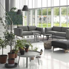 Muuto Beistelltisch Around Coffee Table. #Muuto #artvoll #TopMarke www.artvoll.de