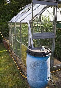 Greenhouse guide: 13 incredibly useful tips - Telegraph