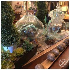 Vignettes, Terrarium, Rust, Display, Table Decorations, Shop, Home Decor, Terrariums, Floor Space