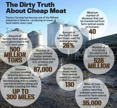 factory farming is toxic, polluting waterways, land, air . about cheap meat; another reason to be Sirloin Roast, News Memes, Cheap Meat, Marketing Words, World Hunger, Animal Agriculture, Factory Farming, Why Vegan, Vegan News
