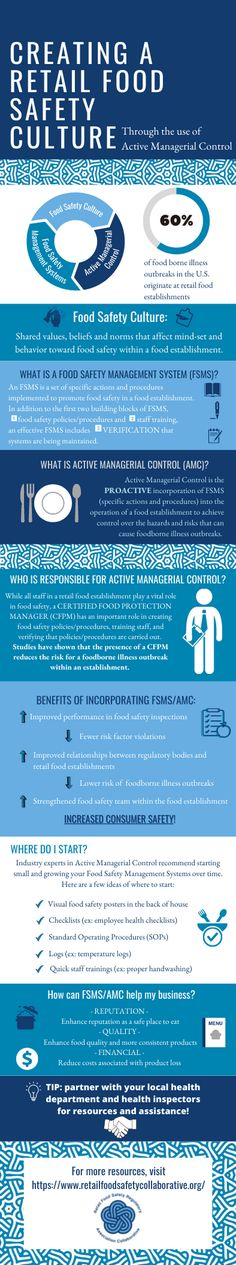 What Is Food Safety, Safety Management System, Health Organizations, Environmental Health, Personal Hygiene, Lessons Learned, Assessment, Insight, Infographic