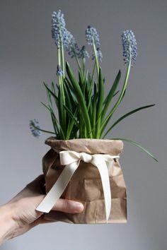 Plant Pot in Brown Paper Bag - Tutorial