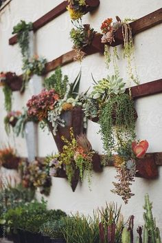 Image Via: Delight for the Eyes - lovely vertical garden  (I'd like to plant vegetables and fruit this way!)
