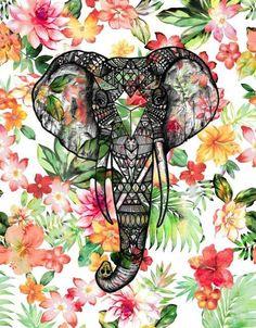 Elephant Backgrounds Tumblr | elephant backgrounds | Tumblr