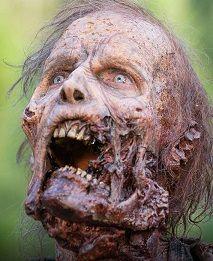 Zombie ! The Walking Dead / ?