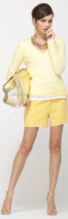 ➗Elegant Yellow