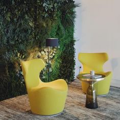 Did you dream about beautiful indoor, real plant walls in your spaces? We have it at Forest Homes. Walls that lasts through the years with natural plants and zero maintenance! 🍃Design your fantastic i Indoor Plant Wall, Indoor Plants, House Plants Decor, Home Wall Decor, Moss Wall Art, In Wall Speakers, Interior Plants, Decorating On A Budget, Modern Chairs