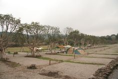 제주 캠핑클럽 캠핑장