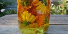 DIY Flower Oils for Making Healing Salves and Creams