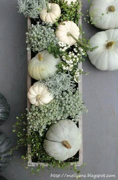 .I love these colors minus the blue - maybe a yellow or dark brown in place of blue. And I love the idea of painted pumpkins mixed with flowers.