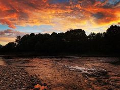 Surna My World, Fish, Celestial, Sunset, Outdoor, Instagram, Sunsets, Outdoors, Outdoor Games