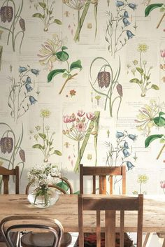 by The Paper Partnership - Multi-coloured - Wallpaper - Lovely botanical wallpaper design by the Paper Partnership.Lovely botanical wallpaper design by the Paper Partnership. Botanical Bedroom, Botanical Interior, Botanical Decor, Botanical Wallpaper, Vintage Botanical Prints, Botanical Kitchen, Botanical Drawings, Vintage Floral, Wallpaper Designs For Walls