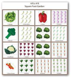 Garden Planting Tips