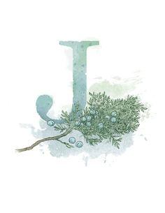Letter J Art Print, Juniper, Nature Theme Alphabet Art, Nursery Giclee Print