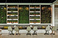 Découvrez le restaurant bio Mercador avec son mur végétal, ses cagettes en bois et son mobilier industriel pour réussir la déco de votre restaurant bio.