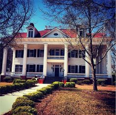 Click this pin for a list of B&Bs in #Georgia
